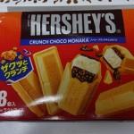 アイスダイエットにチョコモナカを食べる